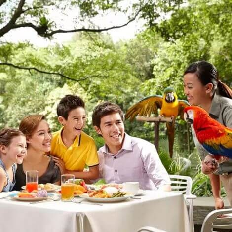 Jurong Bird Park Tickets   Singapore   KitMyTrip