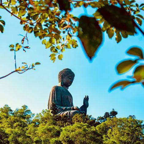 Lantau Island and Monastery Tour in Hong Kong   Book Tickets   kitmytrip