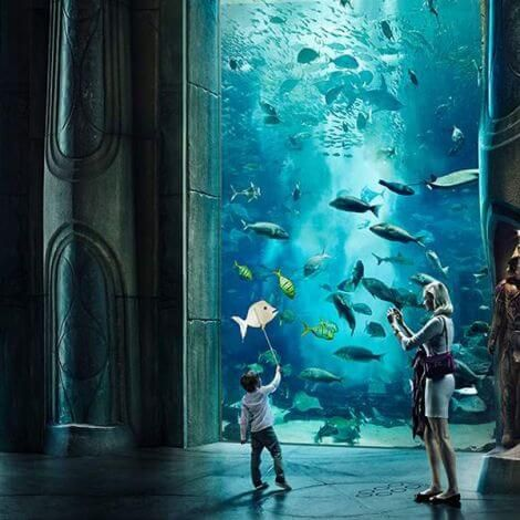 Lost Chambers Dubai | Aquarium Tickets | KitMyTrip