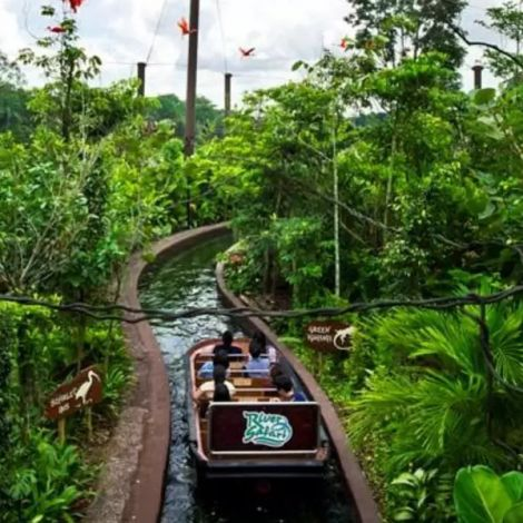 River Safari Singapore   Book Tickets   KitMyTrip