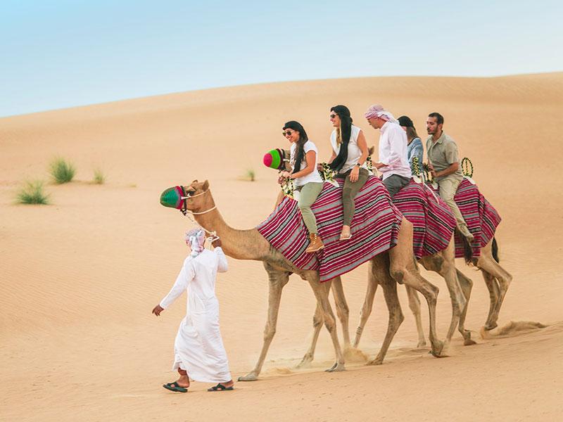 kmt-offer-dt-desertsafari